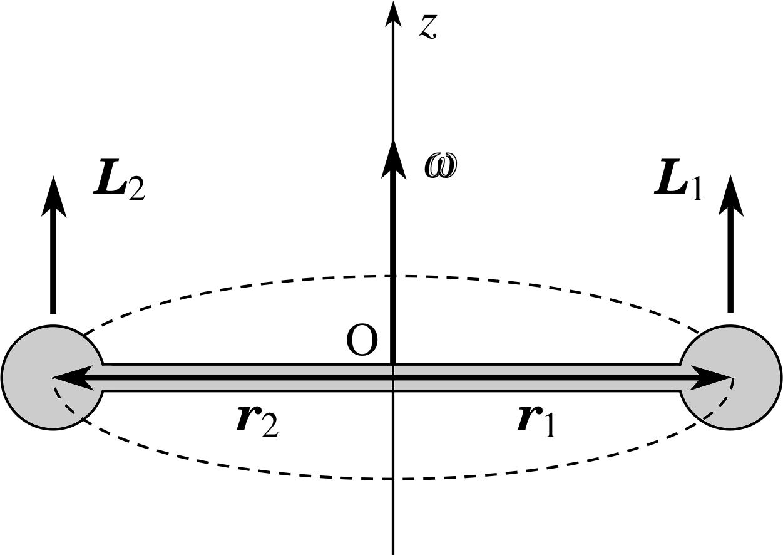 Pplato flap phys 28 angular momentum 53 a rigid dumb bell biocorpaavc